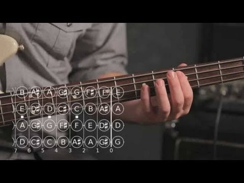 How to Play a Major Pentatonic Scale | Bass Guitar