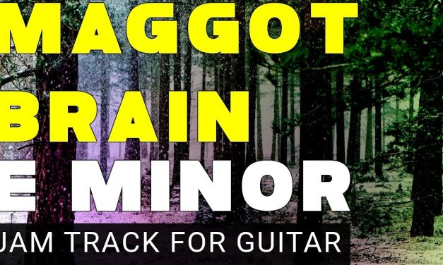 Maggot Brain Backing Track For Guitar In E Minor (Em) 15 minutes Long