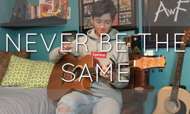 Camila Cabello – Never Be the Same – Cover (fingerstyle guitar)