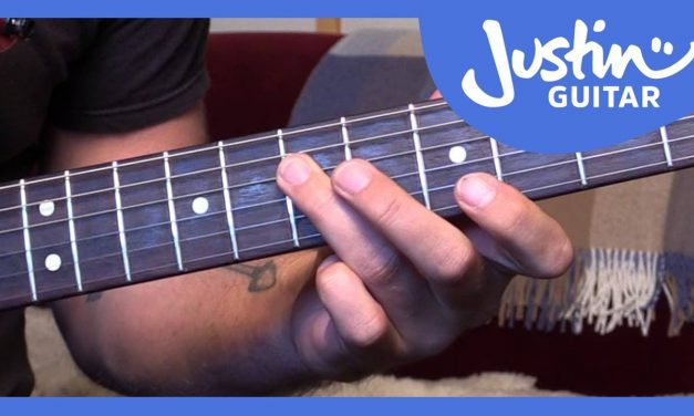 Blues Lick: Stevie Ray Vaughan Style (Guitar Lesson BL-501)