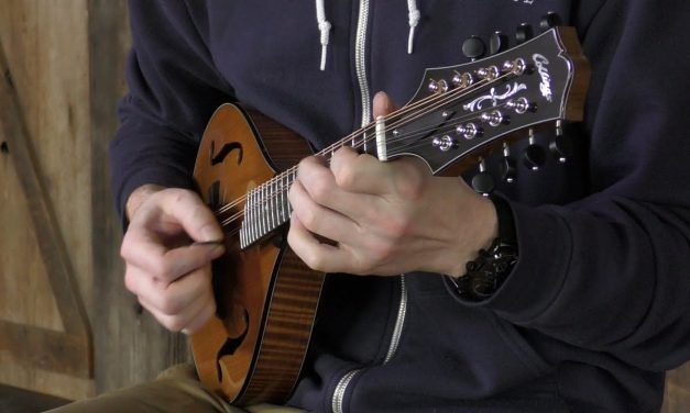 Collings MT A-Model Mandolin, Torrefied Top | Elderly Instruments