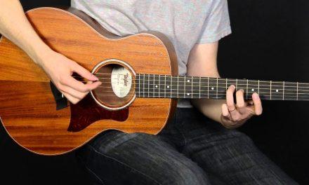 Taylor GS Mini (Spruce & Mahogany) Elderly Instruments