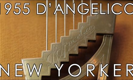 """Pick of the Day"" – D'Angelico New Yorker"