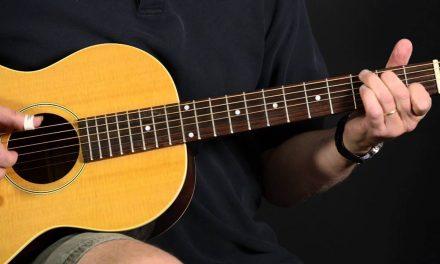 Loar LO-216 – Elderly Instruments