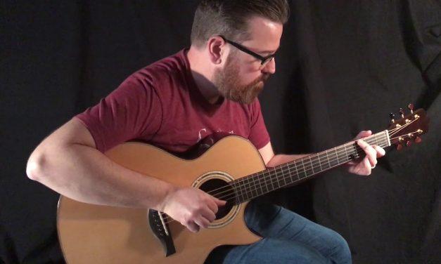 Beauregard African Blackwood Guitar at Guitar Gallery