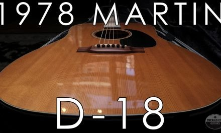 """Pick of the Day"" – 1978 Martin D-18"