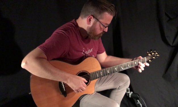 Breedlove Used C25 W Guitar at Guitar Gallery