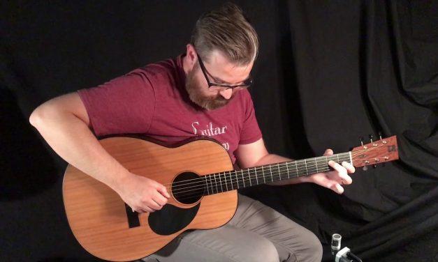 Dion No.3 LaPacho Guitar at Guitar Gallery