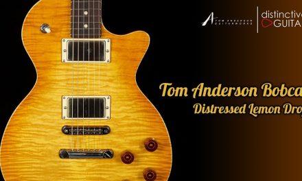 Tom Anderson Bobcat | Lemon Drop In Distress