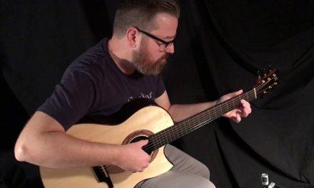 Greenfield Wenge GF Guitar at Guitar Gallery
