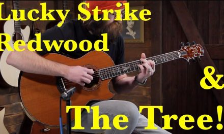 Ryan Signature Series Nightingale – Lucky Strike Redwood & The Tree Mahogany #986