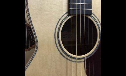 Froggy Bottom Sinker Mahogany Guitar