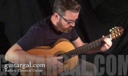 Sasha Radicic Used Classical Guitar at Guitar Gallery