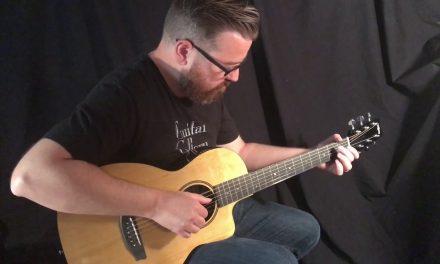 RainSong V-PA1100NS Parlor Guitar by Guitar Gallery