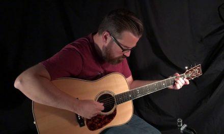 Branzell Dreadnought Guitar at Guitar Gallery