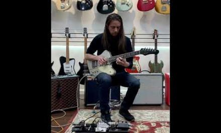 Ronin Guitars Phoenix for sale. Circa 2017-2018