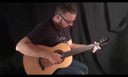 Kostal Brazilian Rosewood Guitar by Guitar Gallery