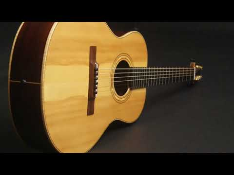 RS Muth S14 Indian Rosewood Guitar at Guitar Gallery
