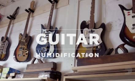 D'Addario Core: Guitar Humidification Tips