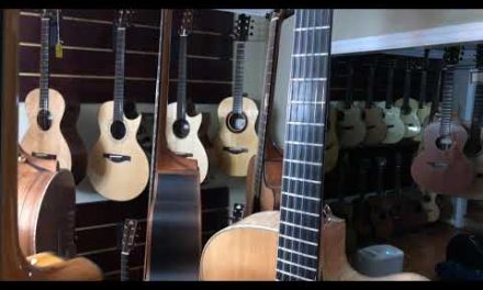 Archtop Guitars at Guitar Gallery