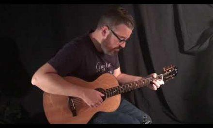 Elysian Acoustics E12 Guitar by Guitar Gallery