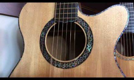 L.J. Williams Guitars at Guitar Gallery