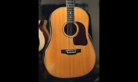 Gallagher Brazilian Rosewood Guitar at Guitar Gallery