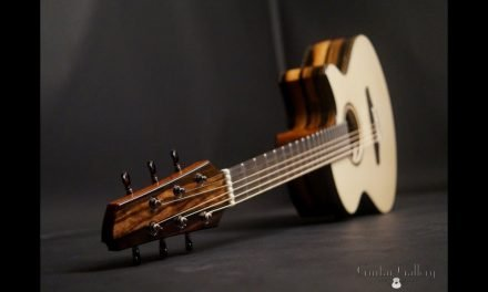Stephen Strahm Eros Cutaway Guitar at Guitar Gallery