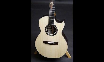 Applegate SJ Brazilian Rosewood Guitar at Guitar Gallery
