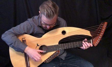 Sedwick Harp Guitar at Guitar Gallery