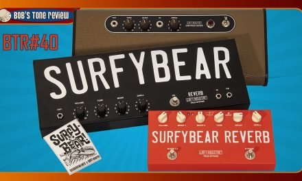 BTR#40 Surfy Industries Surfybear, Real Spring Reverb Pedals Review