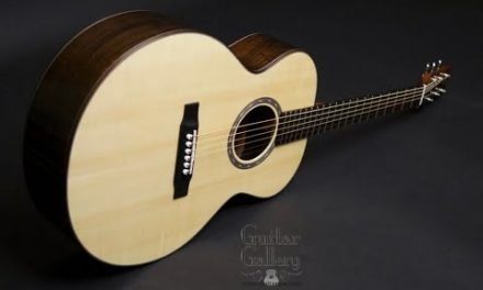 Thomas Rein RJN-1 Guitar by Guitar Gallery