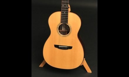 Goodall Brazilian Rosewood Parlor Guitar by Guitar Gallery