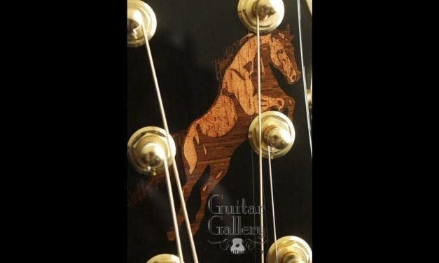 McPherson 4.5XP Guitar with Horse Inlay by Guitar Gallery
