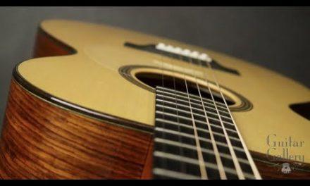Thomas Rein RJN-3 Guitar by Guitar Gallery
