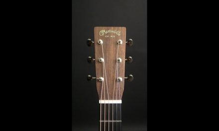 Martin CS 0000 Sinker Mahogany Guitar by Guitar Gallery