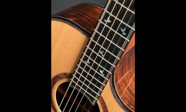 Charis SJc Brazilian Rosewood Guitar by Guitar Gallery